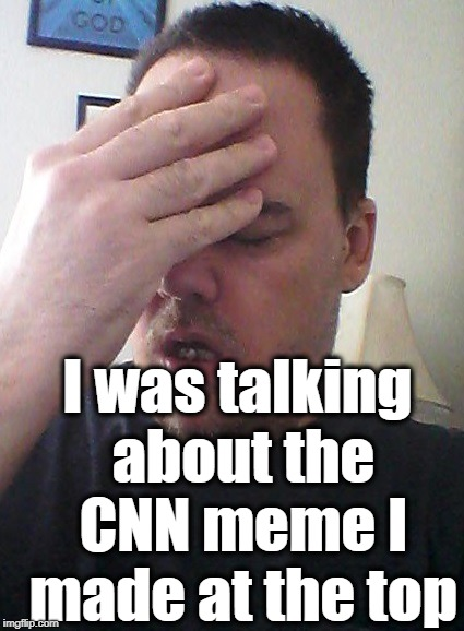 face palm | I was talking about the CNN meme I made at the top | image tagged in face palm | made w/ Imgflip meme maker