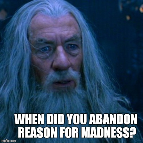When did you...? | WHEN DID YOU ABANDON REASON FOR MADNESS? | image tagged in gandalf,grey,reason,madness,abandon,lotr | made w/ Imgflip meme maker