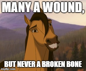 Awkwardly Smiling Spirit | MANY A WOUND, BUT NEVER A BROKEN BONE | image tagged in awkwardly smiling spirit | made w/ Imgflip meme maker