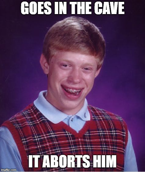 Bad Luck Brian Meme | GOES IN THE CAVE IT ABORTS HIM | image tagged in memes,bad luck brian | made w/ Imgflip meme maker