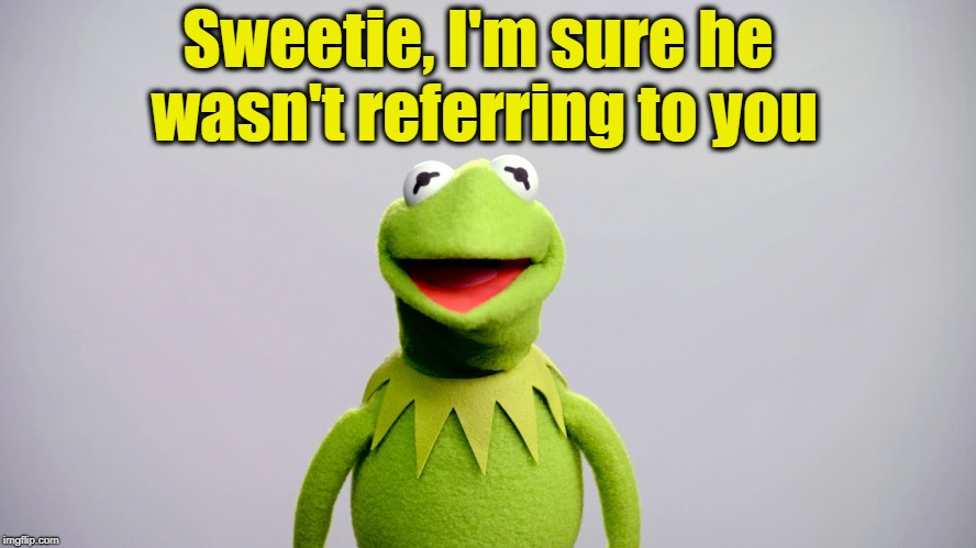 Sweetie, I'm sure he wasn't referring to you | made w/ Imgflip meme maker