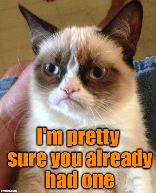 Grumpy Cat Meme | I'm pretty sure you already had one | image tagged in memes,grumpy cat | made w/ Imgflip meme maker