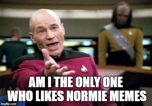 Picard Wtf Meme | AM I THE ONLY ONE WHO LIKES NORMIE MEMES | image tagged in memes,picard wtf | made w/ Imgflip meme maker