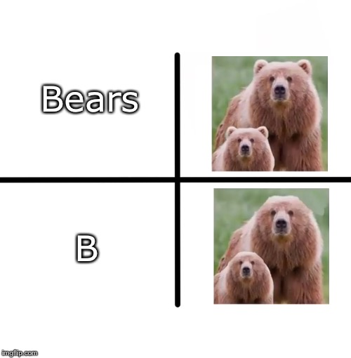 Bears | Bears B | image tagged in b | made w/ Imgflip meme maker