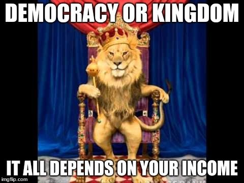 Wise King | DEMOCRACY OR KINGDOM IT ALL DEPENDS ON YOUR INCOME | image tagged in democracy,kingdom | made w/ Imgflip meme maker