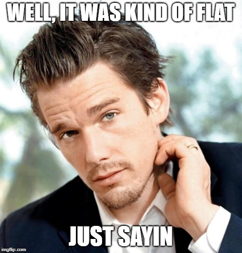 WELL, IT WAS KIND OF FLAT JUST SAYIN | made w/ Imgflip meme maker