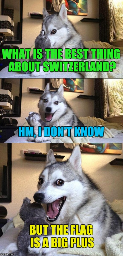 Bad Pun Dog Meme | WHAT IS THE BEST THING ABOUT SWITZERLAND? HM, I DON'T KNOW BUT THE FLAG IS A BIG PLUS | image tagged in memes,bad pun dog | made w/ Imgflip meme maker