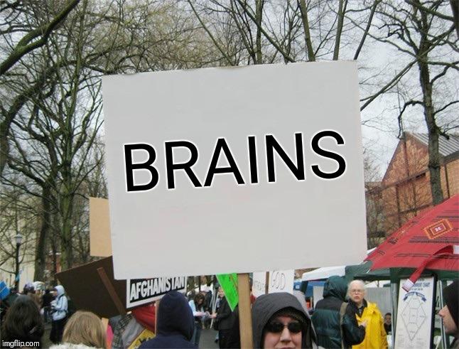 Blank protest sign | BRAINS | image tagged in blank protest sign | made w/ Imgflip meme maker