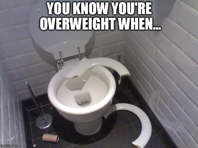 Overweight Toilet | YOU KNOW YOU'RE OVERWEIGHT WHEN... | image tagged in overweight,fat,toilet,seat,joke | made w/ Imgflip meme maker