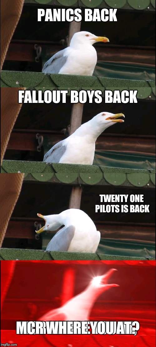 Inhaling Seagull Meme | PANICS BACK FALLOUT BOYS BACK TWENTY ONE PILOTS IS BACK MCR WHERE YOU AT? | image tagged in memes,inhaling seagull | made w/ Imgflip meme maker