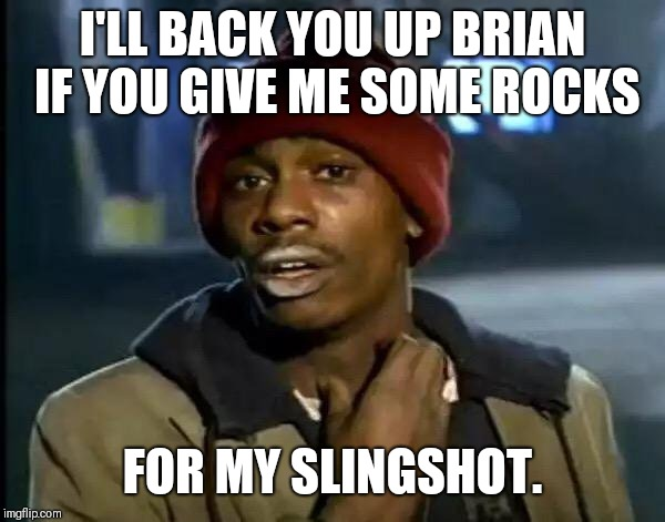 Y'all Got Any More Of That Meme | I'LL BACK YOU UP BRIAN IF YOU GIVE ME SOME ROCKS FOR MY SLINGSHOT. | image tagged in memes,y'all got any more of that | made w/ Imgflip meme maker