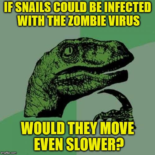 Finally, a zombie I could outrun. |  IF SNAILS COULD BE INFECTED WITH THE ZOMBIE VIRUS; WOULD THEY MOVE EVEN SLOWER? | image tagged in memes,philosoraptor,zombies,snail,too slow | made w/ Imgflip meme maker