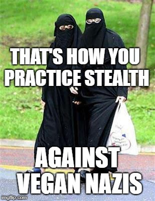 THAT'S HOW YOU PRACTICE STEALTH AGAINST VEGAN NAZIS | image tagged in muslim feminist | made w/ Imgflip meme maker