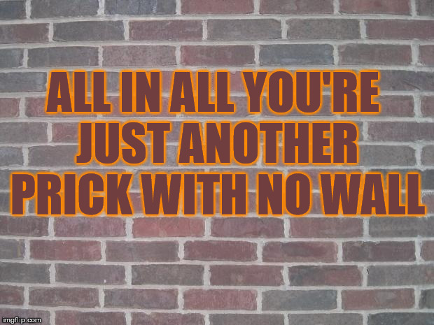 Prick Wall | ALL IN ALL YOU'RE JUST ANOTHER PRICK WITH NO WALL | image tagged in the wall,memes,donald trump is an idiot,pink floyd,trump wall | made w/ Imgflip meme maker