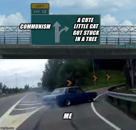 Left Exit 12 Off Ramp Meme | COMMUNISM A CUTE LITTLE CAT GOT STUCK IN A TREE ME | image tagged in memes,left exit 12 off ramp | made w/ Imgflip meme maker