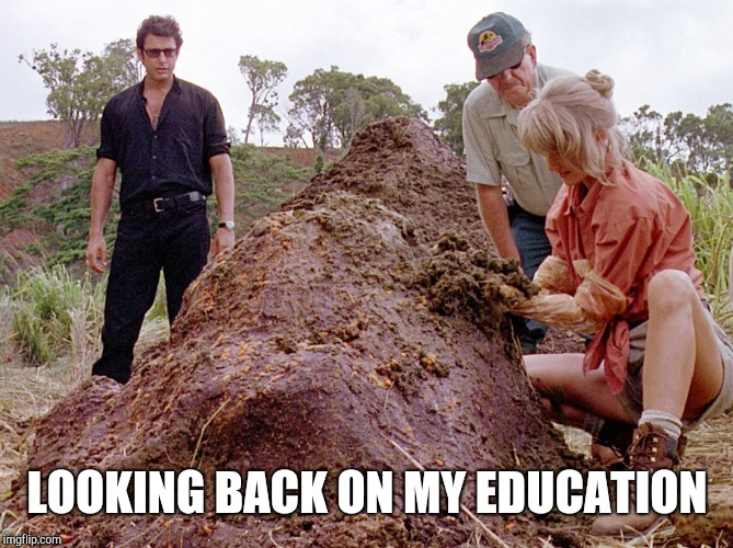 Jurassic Park Shit | LOOKING BACK ON MY EDUCATION | image tagged in jurassic park shit | made w/ Imgflip meme maker