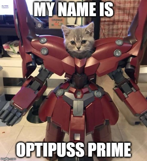 Optipuss Prime | MY NAME IS OPTIPUSS PRIME | image tagged in transformers,optimus prime,cat,cats,funny cats,funny memes | made w/ Imgflip meme maker