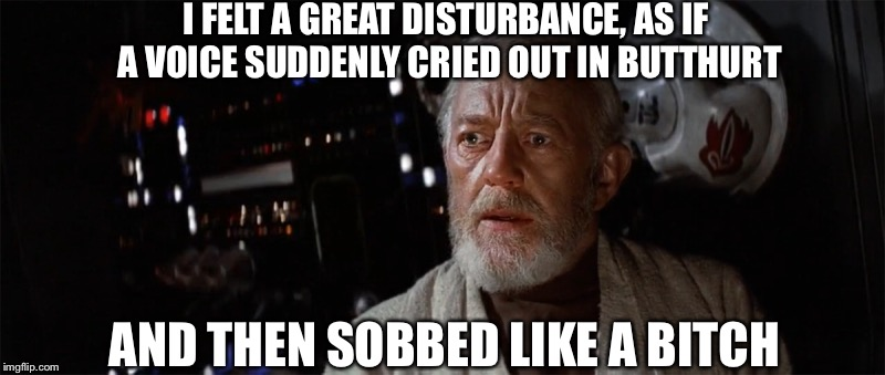 Great Butthurt In The Force | I FELT A GREAT DISTURBANCE, AS IF A VOICE SUDDENLY CRIED OUT IN BUTTHURT AND THEN SOBBED LIKE A B**CH | image tagged in butthurt,obi wan,star wars,the force | made w/ Imgflip meme maker