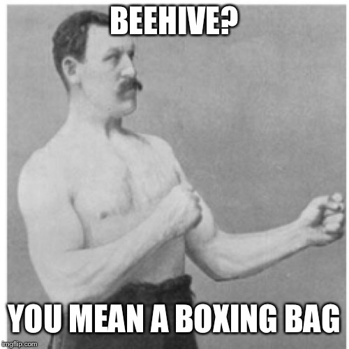Overly Insane Man | BEEHIVE? YOU MEAN A BOXING BAG | image tagged in memes,overly manly man,bees,beehive,boxing,fighting | made w/ Imgflip meme maker