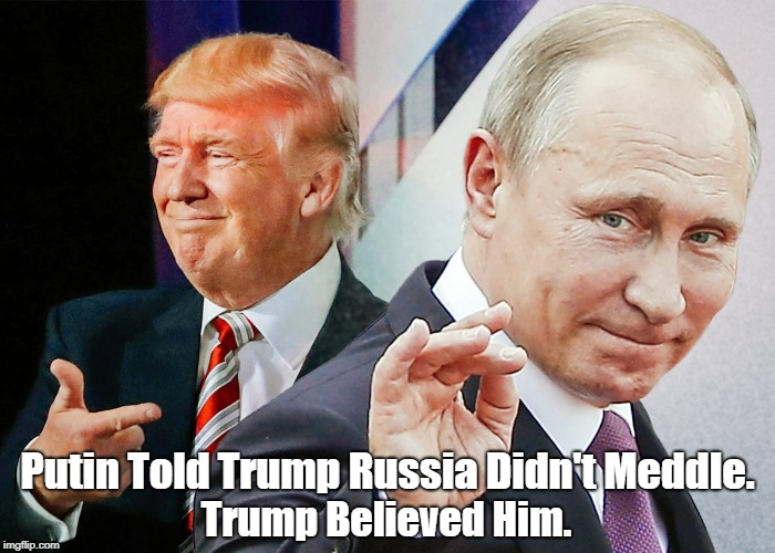 """Image result for """"pax on both houses"""" putin no need for collusion putin"""