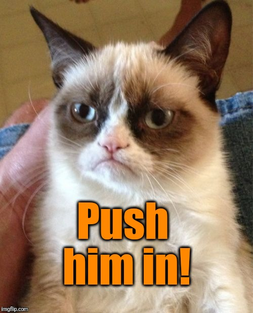 Grumpy Cat Meme | Push him in! | image tagged in memes,grumpy cat | made w/ Imgflip meme maker