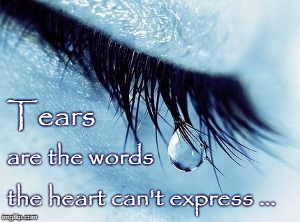 Wordless Tears | Tears the heart can't express ... are the words | image tagged in tears,words,unexpressed | made w/ Imgflip meme maker
