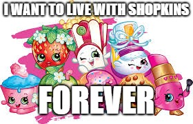 I WANT TO LIVE WITH SHOPKINS FOREVER | image tagged in shopkins | made w/ Imgflip meme maker