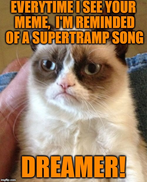 Grumpy Cat Meme | EVERYTIME I SEE YOUR MEME,  I'M REMINDED OF A SUPERTRAMP SONG DREAMER! | image tagged in memes,grumpy cat | made w/ Imgflip meme maker
