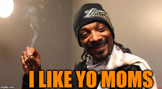 Snoop Dogg | I LIKE YO MOMS | image tagged in snoop dogg | made w/ Imgflip meme maker