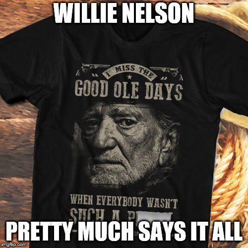WILLIE NELSON PRETTY MUCH SAYS IT ALL | image tagged in willie nelson | made w/ Imgflip meme maker