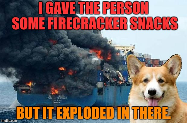 I GAVE THE PERSON SOME FIRECRACKER SNACKS BUT IT EXPLODED IN THERE. | image tagged in disaster corgi,snacks,firecrackers,explosion,yum | made w/ Imgflip meme maker