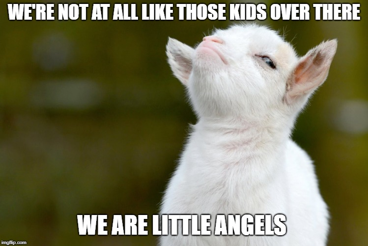 Proud baby goat | WE'RE NOT AT ALL LIKE THOSE KIDS OVER THERE WE ARE LITTLE ANGELS | image tagged in proud baby goat | made w/ Imgflip meme maker