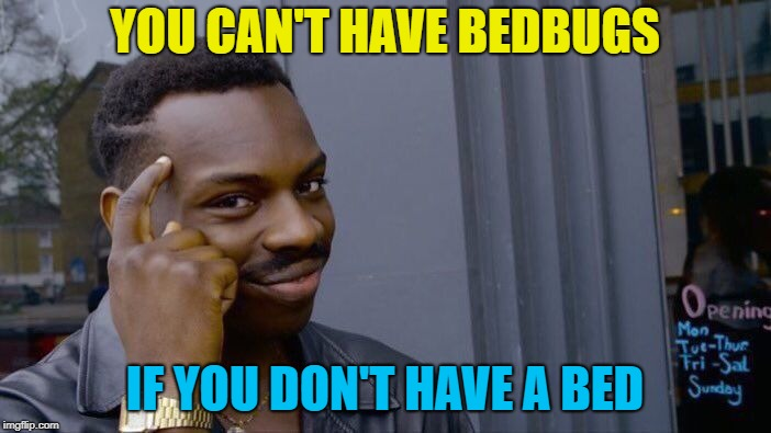 Roll Safe Think About It Meme | YOU CAN'T HAVE BEDBUGS IF YOU DON'T HAVE A BED | image tagged in memes,roll safe think about it | made w/ Imgflip meme maker
