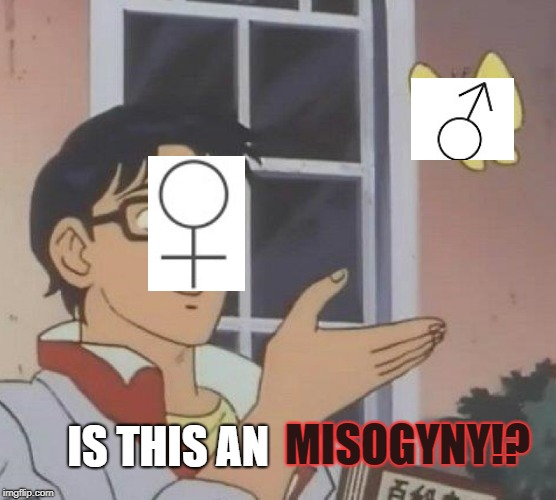given my experience on the internet...people are yet to give a proper explanation   | MISOGYNY!? IS THIS AN | image tagged in memes,is this a pigeon,sjw,misogyny,not sure if | made w/ Imgflip meme maker