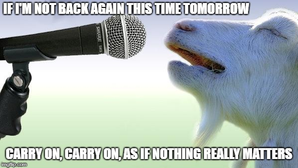 Any Way The Wind Blows | IF I'M NOT BACK AGAIN THIS TIME TOMORROW CARRY ON, CARRY ON, AS IF NOTHING REALLY MATTERS | image tagged in goat singing,memes | made w/ Imgflip meme maker