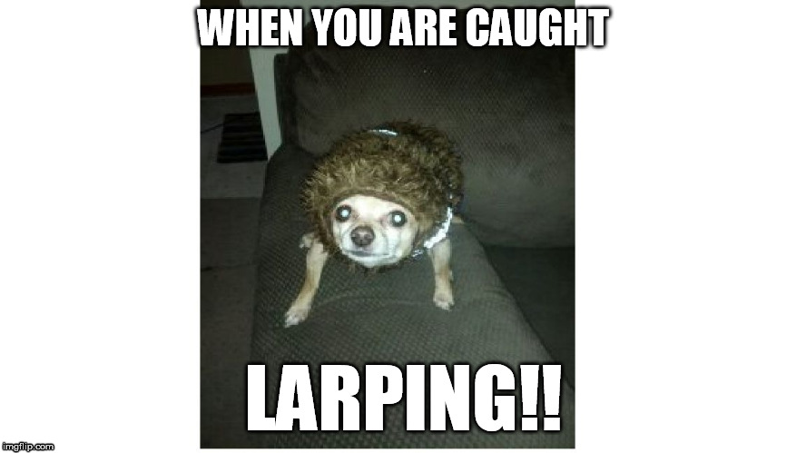 WHEN YOU ARE CAUGHT LARPING!! | image tagged in roxy | made w/ Imgflip meme maker