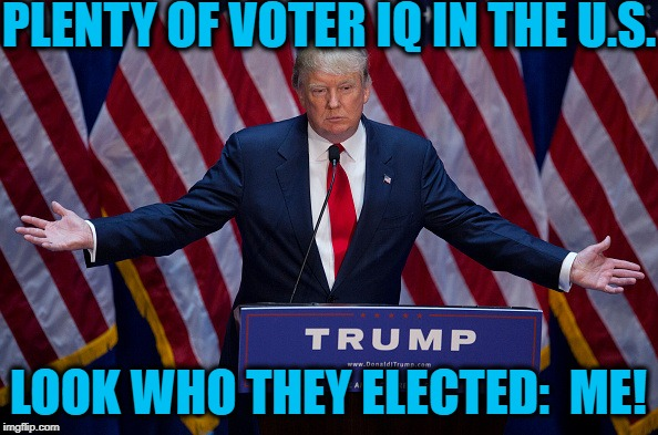 Donald Trump | PLENTY OF VOTER IQ IN THE U.S. LOOK WHO THEY ELECTED:  ME! | image tagged in donald trump | made w/ Imgflip meme maker