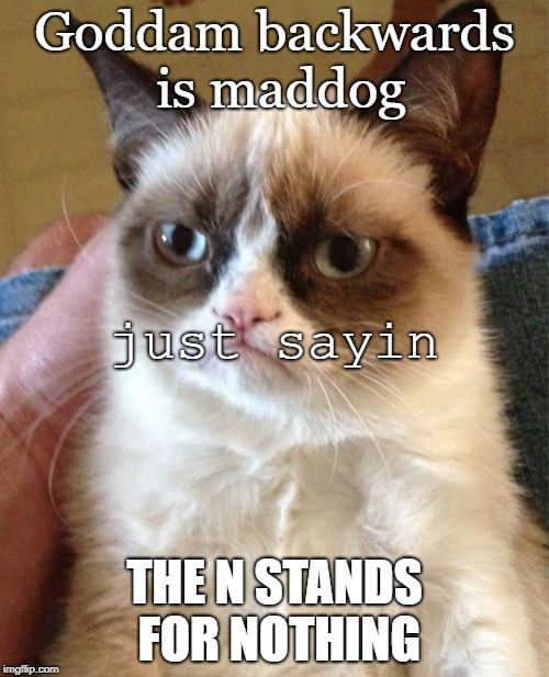 Grumpy Cat Meme | Goddam backwards is maddog THE N STANDS FOR NOTHING just sayin | image tagged in memes,grumpy cat | made w/ Imgflip meme maker
