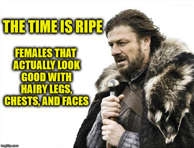 Brace Yourselves X is Coming Meme | THE TIME IS RIPE FEMALES THAT ACTUALLY LOOK GOOD WITH HAIRY LEGS, CHESTS, AND FACES | image tagged in memes,brace yourselves x is coming | made w/ Imgflip meme maker