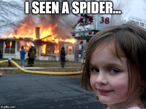 Disaster Girl Meme | I SEEN A SPIDER... | image tagged in memes,disaster girl | made w/ Imgflip meme maker