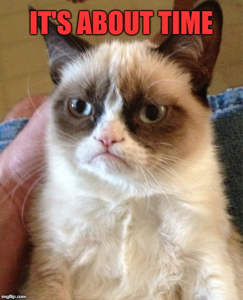 Grumpy Cat Meme | IT'S ABOUT TIME | image tagged in memes,grumpy cat | made w/ Imgflip meme maker