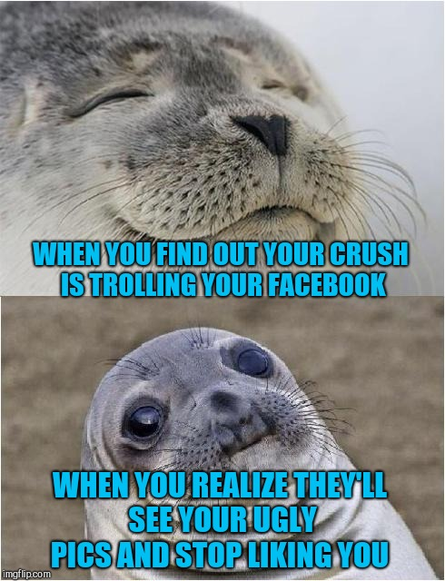 Awkward moment seal | WHEN YOU FIND OUT YOUR CRUSH IS TROLLING YOUR FACEBOOK WHEN YOU REALIZE THEY'LL SEE YOUR UGLY PICS AND STOP LIKING YOU | image tagged in awkward moment seal,jbmemegeek,when your crush,facebook | made w/ Imgflip meme maker