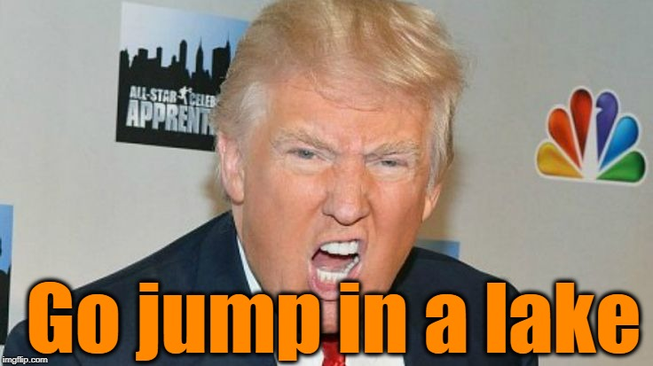 trump mad | Go jump in a lake | image tagged in trump mad | made w/ Imgflip meme maker