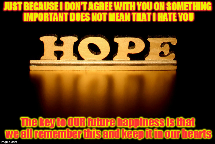 JUST BECAUSE I DON'T AGREE WITH YOU ON SOMETHING IMPORTANT DOES NOT MEAN THAT I HATE YOU The key to OUR future happiness is that we all reme | image tagged in hope,future,respect | made w/ Imgflip meme maker