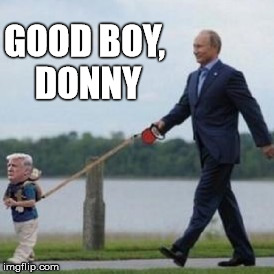 GOOD BOY, DONNY | made w/ Imgflip meme maker