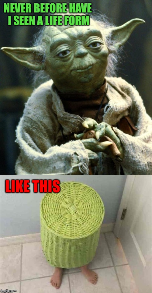 What IS that thing? | NEVER BEFORE HAVE I SEEN A LIFE FORM LIKE THIS | image tagged in yoda,hide and seek,memes,funny | made w/ Imgflip meme maker