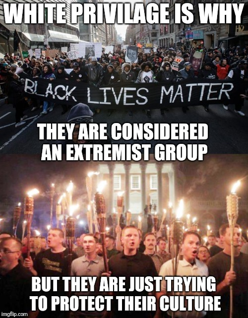 The definition of white privilage  | WHITE PRIVILAGE IS WHY BUT THEY ARE JUST TRYING TO PROTECT THEIR CULTURE THEY ARE CONSIDERED AN EXTREMIST GROUP | image tagged in white privilege,white trash,black lives matter,terrorists,white supremacists in charlottesville | made w/ Imgflip meme maker