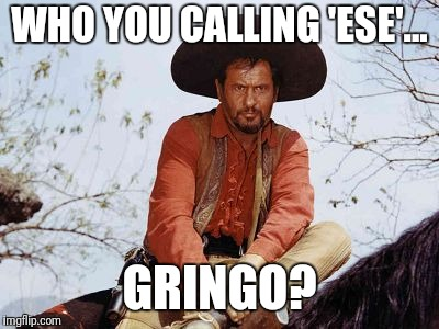 Angry Mexican | WHO YOU CALLING 'ESE'... GRINGO? | image tagged in angry mexican | made w/ Imgflip meme maker