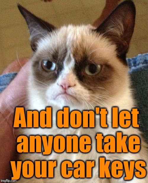 Grumpy Cat Meme | And don't let anyone take your car keys | image tagged in memes,grumpy cat | made w/ Imgflip meme maker