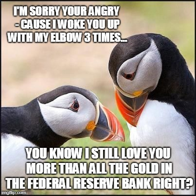 I'm Sorry I Woke You Puffin | I'M SORRY YOUR ANGRY - CAUSE I WOKE YOU UP WITH MY ELBOW 3 TIMES... YOU KNOW I STILL LOVE YOU MORE THAN ALL THE GOLD IN THE FEDERAL RESERVE  | image tagged in memes,puffin | made w/ Imgflip meme maker